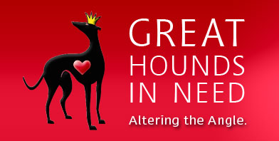 great-hounds-in-need